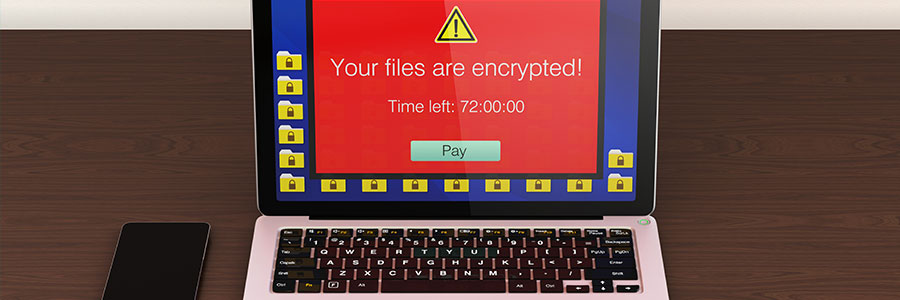No Ransom: a place for free decryption