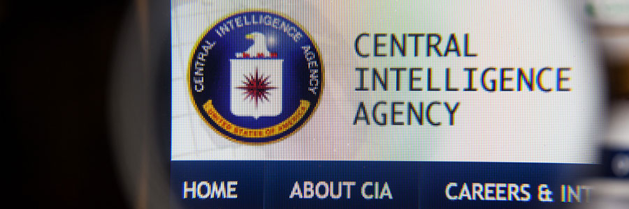 Wikileaks' charges of government spying